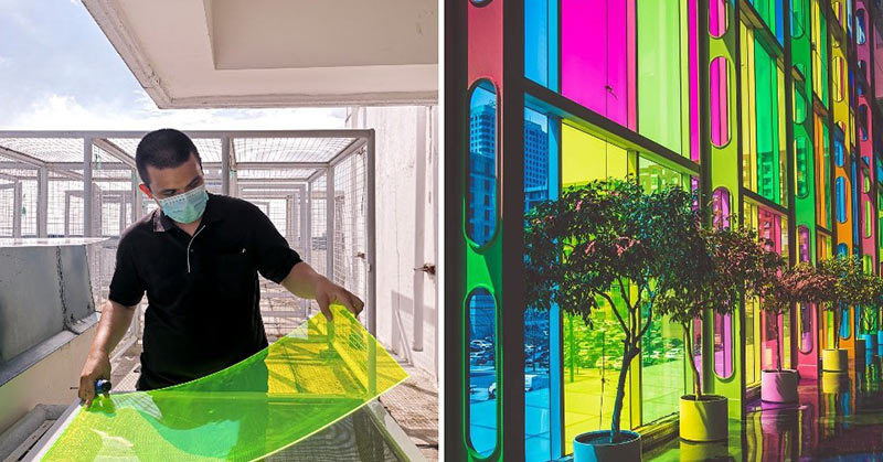 solar windows made with rotten vegetables
